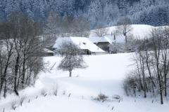 Winter-9364