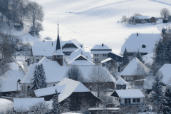 Winter-9371