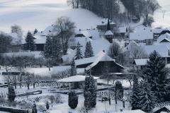 Winter-9373