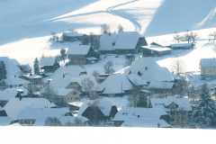 Winter-9420