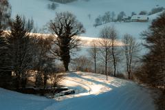 Winter-9436