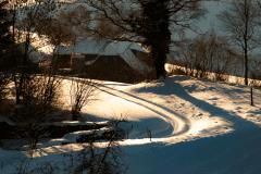 Winter-9442