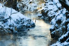 Winter-9673