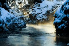 Winter-9675