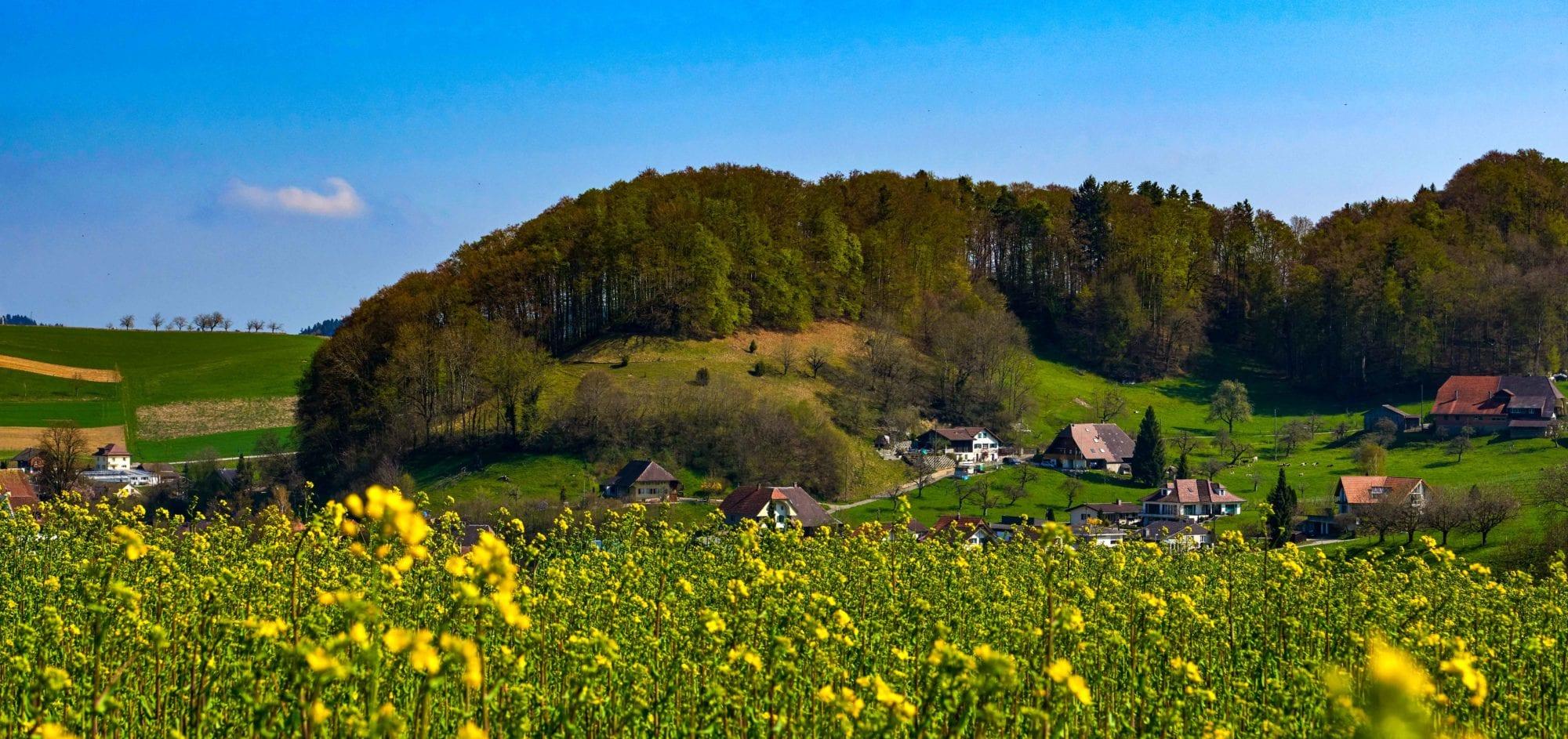 Gemeinderat Gemeinde Melchnau 2