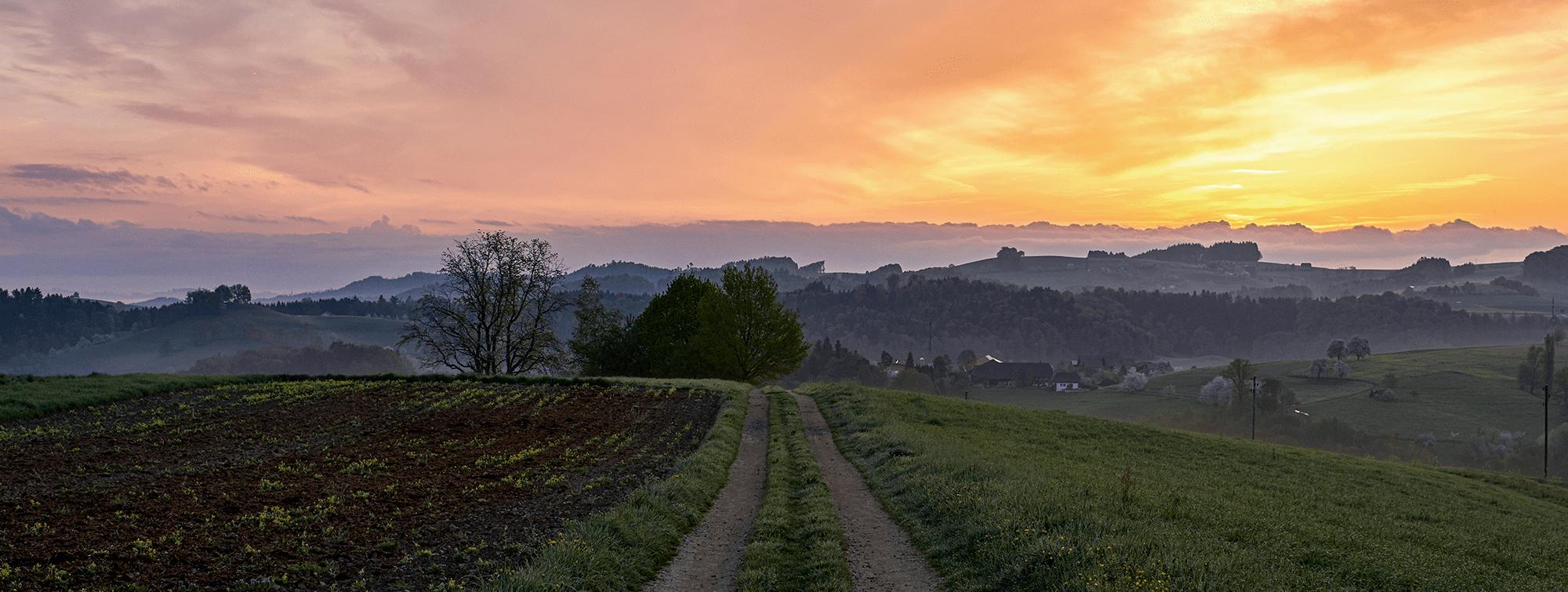 Home Gemeinde Melchnau 4
